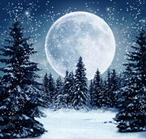 Imagine Iarăşi ninge cuminte afară